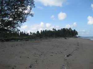 ที่ดินเปล่า ด้านหน้าติดทะเล ด้านหลังติดถนน 100 ตร.วา เหมาะสำหรับการพักผ่อน อ.หลังสวน จ.ชุมพร 5 แสน 3