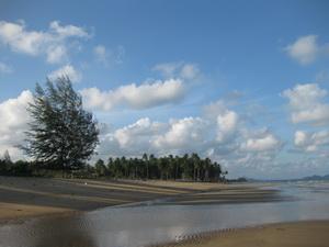 ที่ดินเปล่า ด้านหน้าติดทะเล ด้านหลังติดถนน 100 ตร.วา เหมาะสำหรับการพักผ่อน อ.หลังสวน จ.ชุมพร 5 แสน 4
