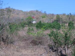 ขายด่วน ที่ดินเปล่า ติดถนน อ. หัวหิน ซ. หัวหิน 112 ซ. ตลาดน้ำหัวหิน ทั้งหมด 19 ไร่ 19 ล้าน 1