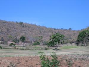 ขายด่วน ที่ดินเปล่า ติดถนน อ. หัวหิน ซ. หัวหิน 112 ซ. ตลาดน้ำหัวหิน ทั้งหมด 19 ไร่ 19 ล้าน 5
