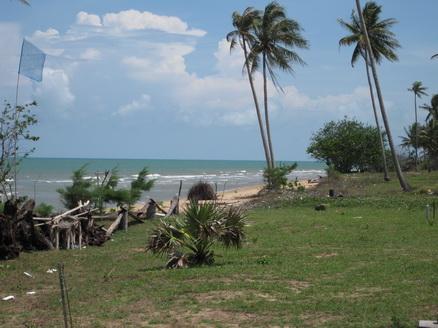 ขาย ที่ดิน ติดทะเล ชุมพร พื้นที่ 1 ไร่ ด้านหน้าติดทะเล ด้านหลังติดถนนลาดยาง เพียง 2 ล้าน 1