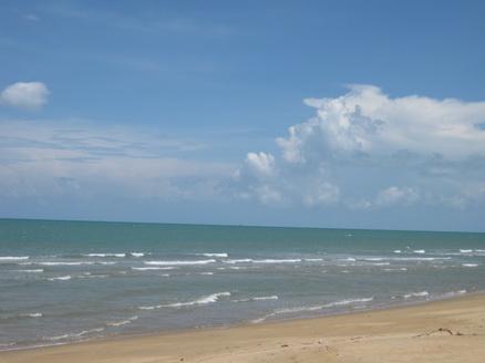 ขาย ที่ดิน ติดทะเล ชุมพร พื้นที่ 1 ไร่ ด้านหน้าติดทะเล ด้านหลังติดถนนลาดยาง เพียง 2 ล้าน 3