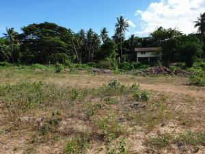 ขาย ที่ดินเปล่า ติดคลอง ใกล้ฝายกั้นน้ำ มีเสียงน้ำไหล เหมาะกับการสร้างบ้านสวน พักอาศัย อ.ปราณบุรี 1