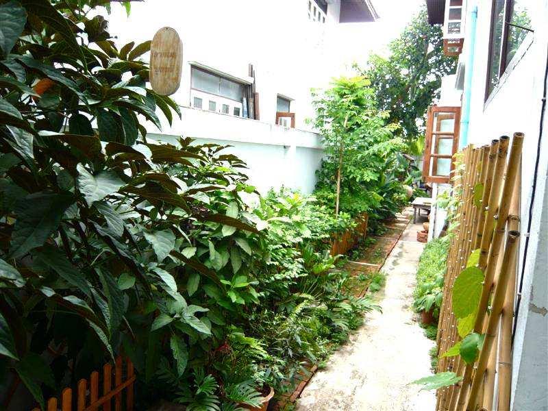 (บ้านเช่าไปแล้ว)บ้านเช่าราคาถูกพุทธมณฑลสาย2 / บ้านเดี่ยวให้เช่าถูกมาก ย่านพุทธมณฑลสาย2 เขตทวีวัฒนา 6