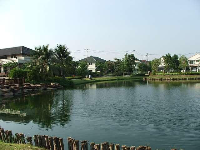 (บ้านเช่าไปแล้ว)บ้านเช่ารังสิต / บ้านสวย ให้เช่าถูก ม.พฤกษ์ลดา-รังสิตคลอง4 โครงการแลนด์เฮาส์ 3