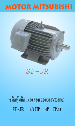 SF-JR 1/2 HP 4P IP.44