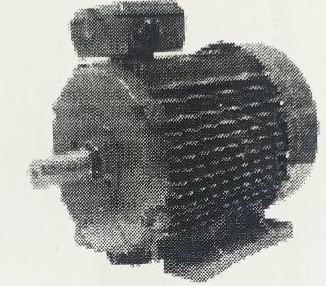 ELECTRIC MOTOR/THREE PHASE CAST IRON  ALUMINIUM DS SERIES