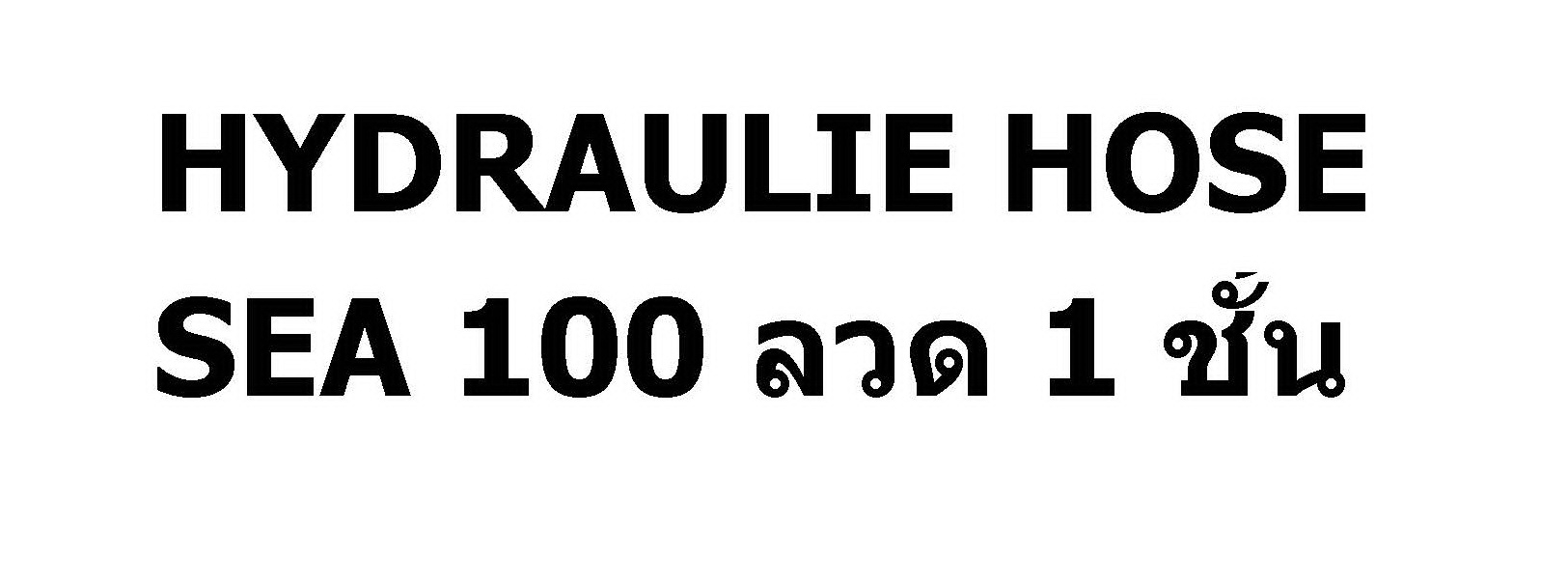 สายHYDRAULIE HOSE-SEA100 ลวด 1 ชั้น