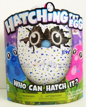 Hatching Pet Egg (ETN) ของเล่นฟักไข่มหัศจรรย์  สามารถฟักเป็นสัตว์เลี้ยงเล่นได้