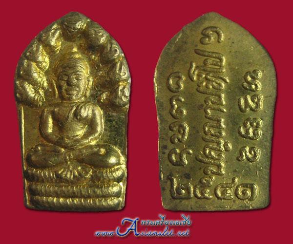 พระปรกใบมะขามอาจารย์เปลี่ยน, พระนาคปรกใบมะขามพระอาจารย์เปลี่ยน ปญฺญาปทีโป วัดอรัญญวิเวก (บ้านปง) 2