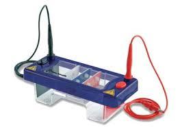 เครื่องแยกสารพันธุกรรม - Fisherbrand™ MultiSUB Mini Horizontal Gel System