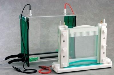 เครื่องแยกสารพันธุกรรม - Fisherbrand™ Cam-pin Casting Base