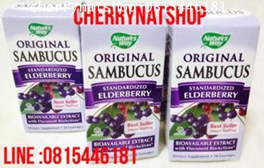 วิตามินแก้หวัด ฆ่าเชื้อสกัดผลElderberry Nature\'sWay Original Sambucus  Elderberry 30 Lozengesแก้หวั