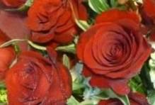 ��������������������������������������������������� 15 ��������� (rose bouquet)