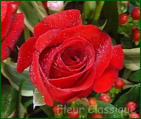 ช่อดอกกุหลาบรวมสี 50 ดอก(mix rose bouquet) 2
