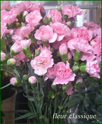 กระเช้า(flower basket) 1