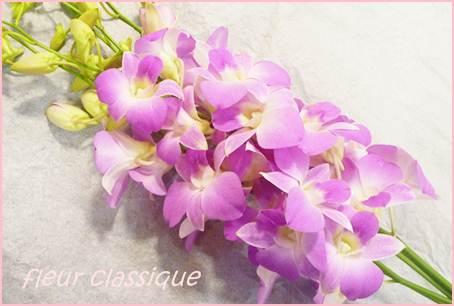สแตนด์ดอกไม้ (stand flower) 2
