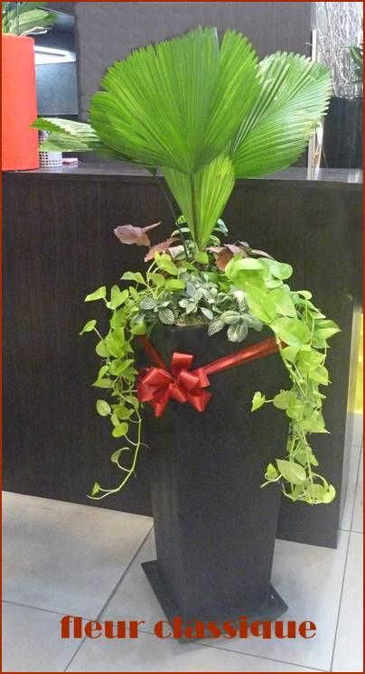 ของขวัญเปิดบริษัทใหม่ Plant