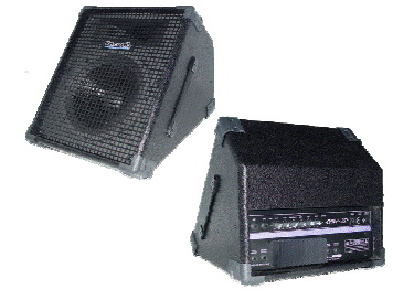 RECORD POWERED STAGE MONITOR รุ่น RPM12