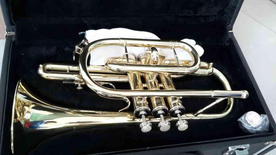 คอร์เน็ท WISDOM รุ่น 8710 Cornet-Bb tone-Gold lacquer;-Bore:11.8mm Bell:121mm