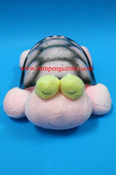 เต่าฉายดาว