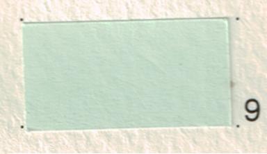 กระดาษทำปก FLYING COLOURS 120 แกรม A4 no.9 สีเขียวอ่อน