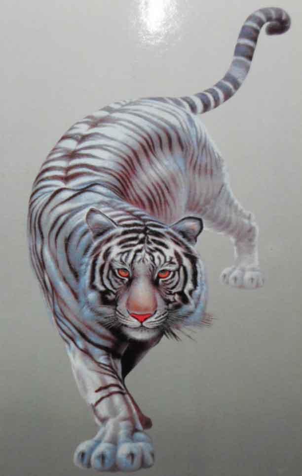 ภาพเสือขาว