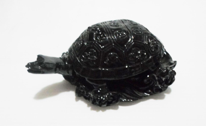 เต่าดำ (200g)
