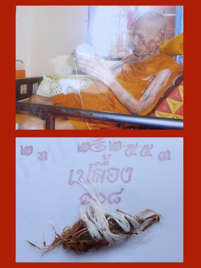 เขี้ยวเสือ หลวงปู่เปลื้อง วัดลาดยาว เกจิดังอายุกว่า 108 ปี สวยแกะจากกระดูกช้าง สำหรับปีนี้ต้องบูชา 5