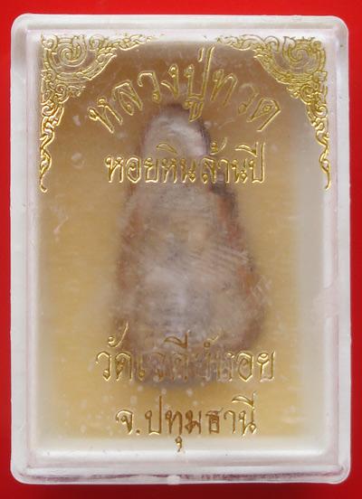 หลวงปู่ทวด แกะจากหอยหินล้านปีทั้งตัว หลวงพ่อทองกลึง วัดเจดีย์หอย ปทุมธานี ปี 2542 แปลกน่าเก็บ 3