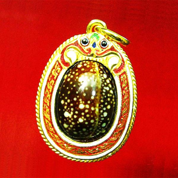 เบี้ยแก้หุ้มทองคำแท้ลงยา ขนาดกลาง 1 ห่วง หลวงปู่เจือ วัดกลางบางแก้ว สุดสวย หรูหรา พร้อมจารด้านหลัง