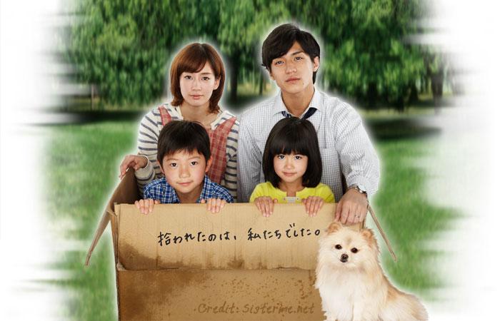My Dog, My Happiness / หมาน้อยสื่อสายใยรัก DVD พากย์ไทย 4 แผ่นจบ