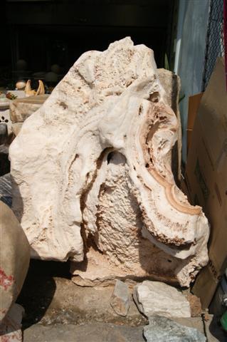 หินประการังสีขาว