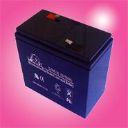 แบตเตอรี่แห้ง LEOCH DJW6-36 6V 36Ah CHINA