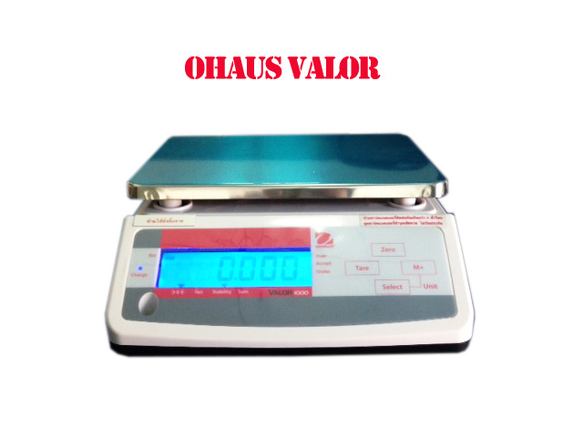 Ohaus Weighing Scale
