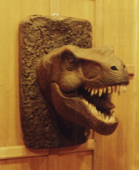 หัวไดโนเสาร์