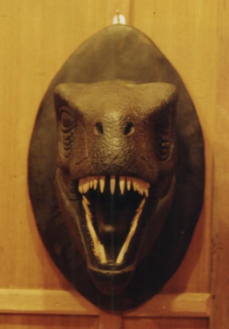 หัวไดโนเสาร์(ขออภัยสินค้าหมดสต็อก)