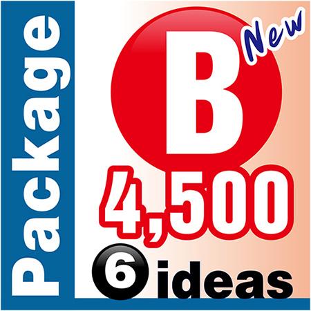 ออกแบบโลโก้ Package B