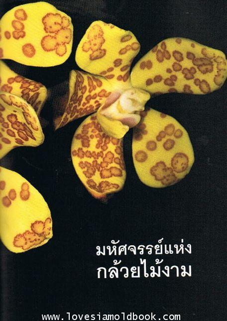 อนุสรณ์ ม.จ.ทิตยาทรงกลด จักรพันธุ์ (ธรรมชาติของกล้วยไม้) 3