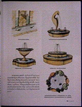 สวนริมน้ำ คู่มือการจัดและตกแต่ง สวนในบ้าน เล่ม 20 2