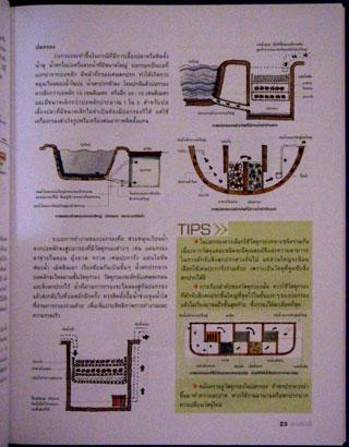 สวนริมน้ำ คู่มือการจัดและตกแต่ง สวนในบ้าน เล่ม 20 4
