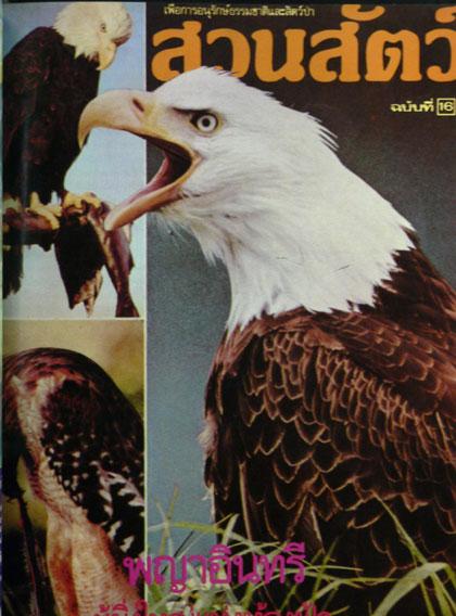 นิตยสารสวนสัตว์ รวมเล่มชุดที่ 2 ฉบับที่ 11 - 20 7