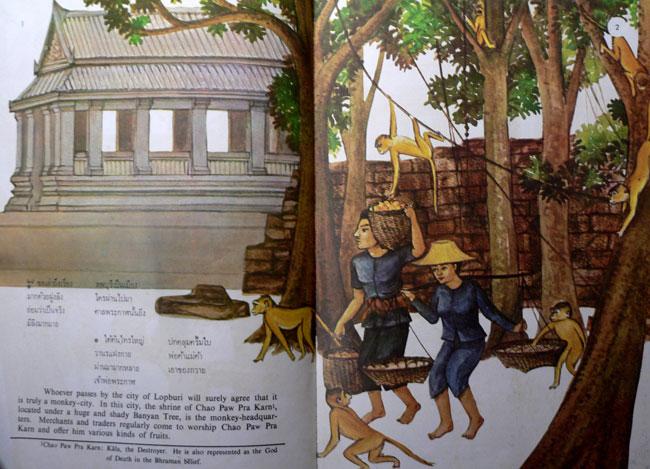 สโมสรวานรลพบุรี (ฉบับภาษาไทย-อังกฤษ) 4