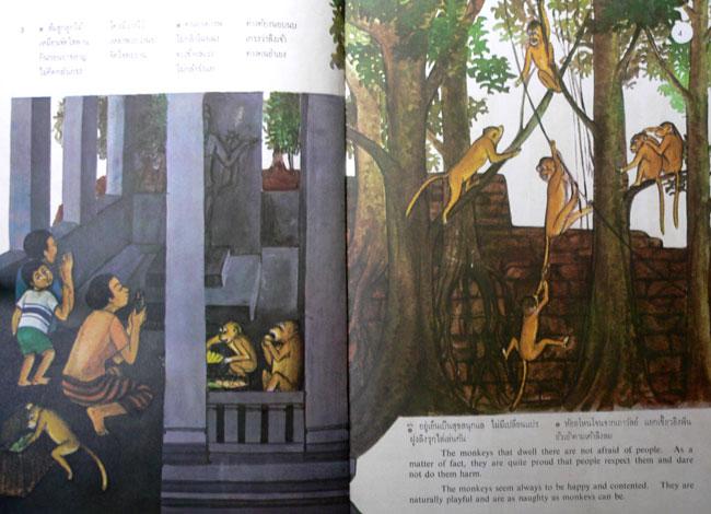 สโมสรวานรลพบุรี (ฉบับภาษาไทย-อังกฤษ) 5