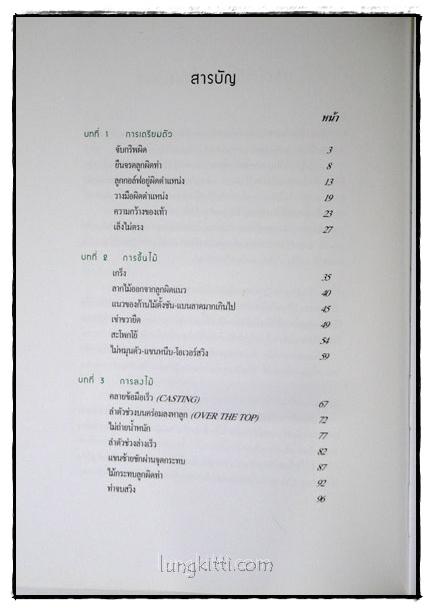 แก้ – วงแบบมือโปร / สิทธิศักดิ์ นันทเทิม 2