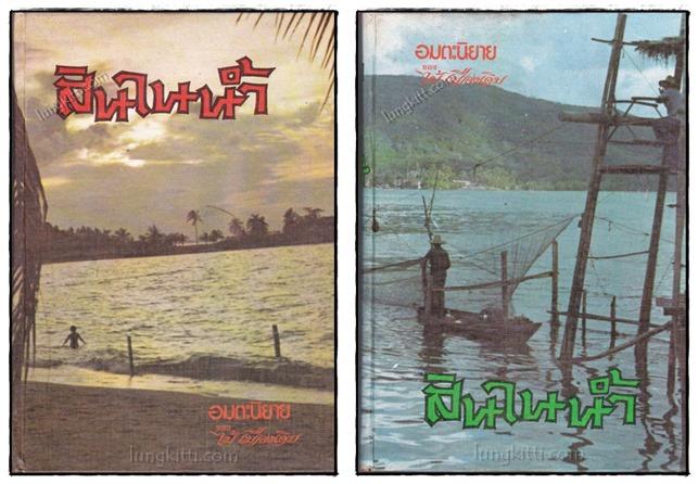 สินในน้ำ (2 เล่มจบ)/ ไม้เมืองเดิม