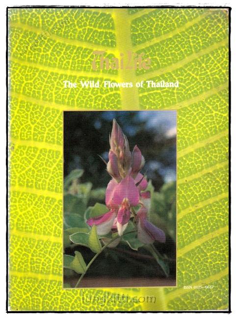 ThaiLife : The Wild Flowers of Thailand