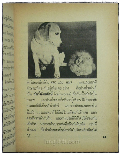 เรื่องของคนรักหมา / คึกฤทธิ์ ปราโมช 4