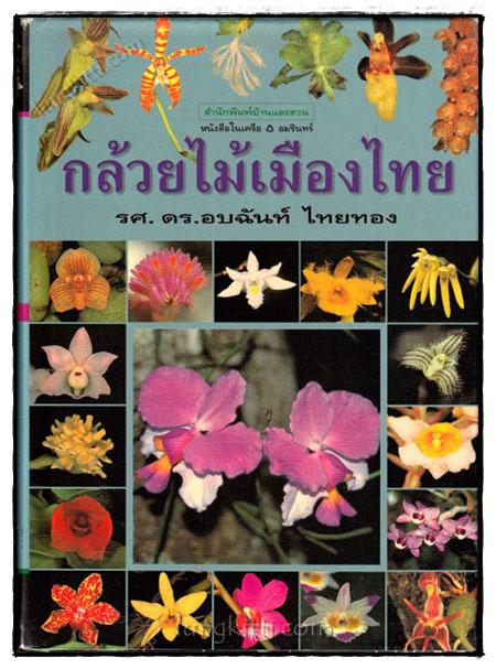 กล้วยไม้เมืองไทย  / รศ.ดร.อบฉันท์ ไทยทอง