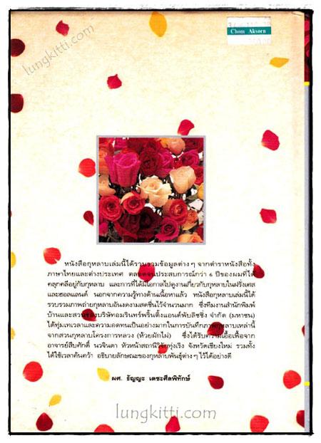 กุหลาบ : ราชินีดอกไม้ 1